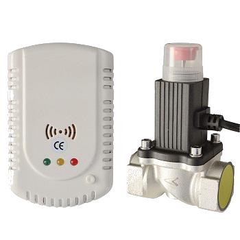 Detector-gaz